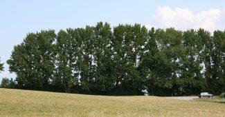 3 tilbud på jordvarmeanlæg